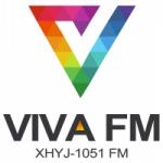 Logo da emissora Radio Viva 105.1 FM