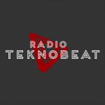 Logo da emissora Rádio Teknobeat