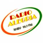 Logo da emissora Radio Alegria 95.7 FM