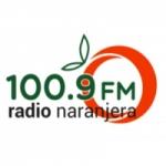 Logo da emissora Radio Naranjera 100.9 FM