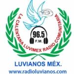 Logo da emissora Radio La Calentana Luvimex 96.5 FM