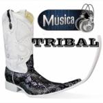 Logo da emissora Radio Miled Music Tribal