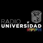 Logo da emissora Radio Universidad 91.3 FM