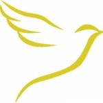Logo da emissora Rede CM