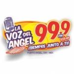 Logo da emissora Radio La Voz del Angel 650 AM 99.9 FM