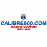 Logo da emissora Radio Cañon 800 AM