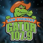 Logo da emissora WGTR 107.9 FM