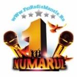 Logo da emissora Radio Pro Manele