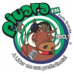 Logo da emissora Rádio Piuara 100.1 FM
