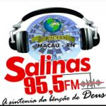 Logo da emissora Rádio Salinas 95 FM
