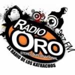 Logo da emissora Radio Oro 96.7 FM