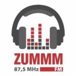 Logo da emissora Rádio Zummm 87.5 FM