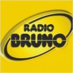 Logo da emissora Radio Bruno 102.1 FM