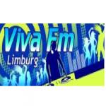 Logo da emissora Viva FM 107 FM
