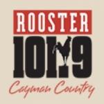Logo da emissora Radio Rooster 101.9 FM