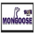 Logo da emissora WMNG 104.9 FM