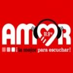 Logo da emissora Radio Amor 91.9 FM