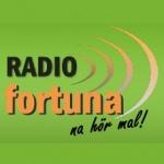 Logo da emissora Radio Fortuna 88.9 FM