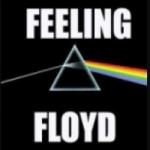 Logo da emissora Radio Feeling Floyd Rock