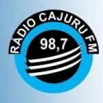 Logo da emissora Rádio Cajuru 98.7 FM