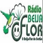 Logo da emissora Web Rádio Beija Flor