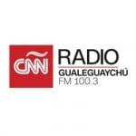 Logo da emissora Radio CNN Gualeguaychú 100.3 FM