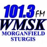 Logo da emissora Radio WMSK 101.3 FM