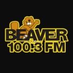 Logo da emissora Radio WVVR Beaver 100.3 FM