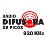 Logo da emissora Rádio Difusora 920 AM