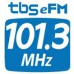 Logo da emissora Radio eFM 101.3 FM
