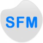 Logo da emissora Sales FM