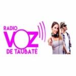 Logo da emissora Rádio Web Voz de Taubaté