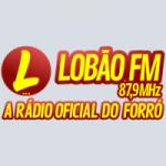 Logo da emissora Rádio Lobão 87.9 FM