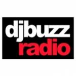Logo da emissora Vibration Buzz radio