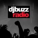 Logo da emissora Vibration DJ Buzz Radio