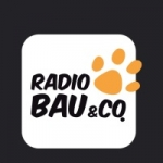 Logo da emissora Virgin Radio Bau