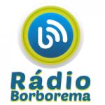 Logo da emissora Rádio Borborema
