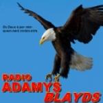 Logo da emissora Rádio Adamys Blayds