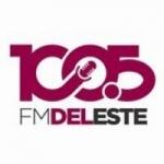 Logo da emissora Radio Del Este 100.5 FM