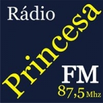 Logo da emissora Rádio Princesa 87.5 FM