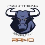 Logo da emissora Rádio Pró Staking BR