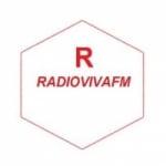 Logo da emissora Rádio Viva FM