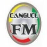 Logo da emissora Rádio Sociedade Difusora Canguçu 103.3 FM