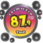 Logo da emissora Rádio Teimozia  87.9 FM