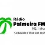 Logo da emissora Palmeira FM