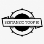 Logo da emissora Rádio Sertanejo Toop 10