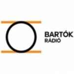 Logo da emissora MR3 Bartok Radio 105.3 FM