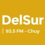 Logo da emissora Radio DelSur 93.5 FM