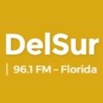 Logo da emissora Radio DelSur 96.1 FM
