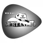 Logo da emissora Rádio Sertanejo Chora Viola